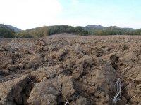 zanieczyszczenia gruntów